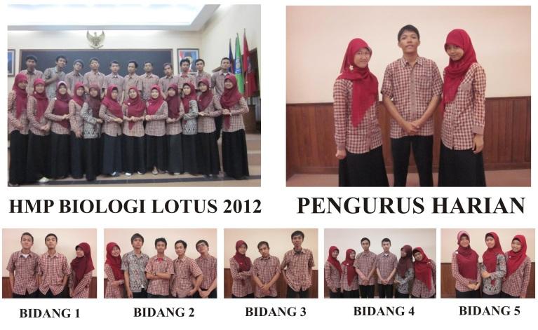 HMP Lotus Struktur 2012Gab